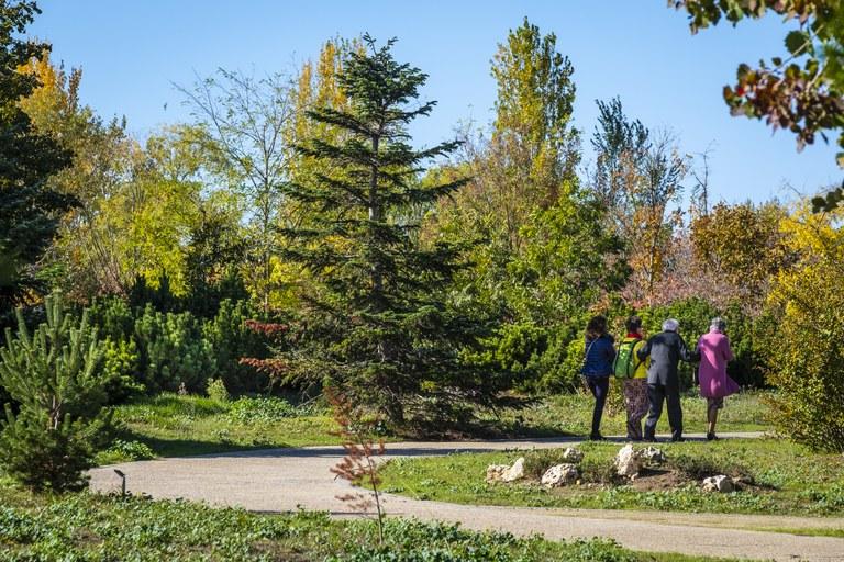 Balanç positiu de visitants a l'Arborètum, malgrat haver estat tancat tres mesos