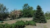 El Jardí Botànic-Arborètum de Lleida modifica l'horari d'obertura al públic des de l'1 de juliol fins al 31 d'agost
